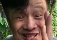 廣府人是古代百越族和馬來人後裔嗎?