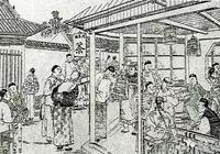 茶樹(Tea Plant)科普