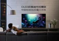 OLED獲高端市場青睞 中國將成OLED最大市場