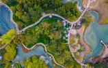 """杭州春天必去免費景點,""""霸佔""""西湖一半的美,錯過太可惜!"""