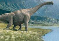 恐龍的部落生活,恐龍的年齡 之謎