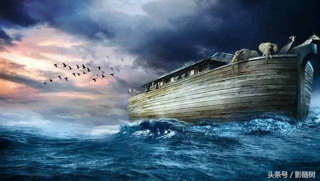 VOL.6 神奇的挪亞方舟