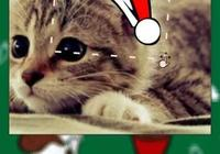 如何看待「請給我一頂聖誕帽@微信官方」在朋友圈刷屏?
