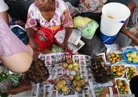 斐濟第一大魚市場見聞
