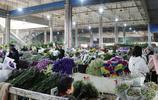 行走的風景——走花都,看亞洲最大的鮮切花交易市場1