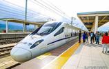 花海一片,讓門源成為中國最美的高鐵小站