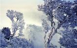 焦作山水風光(13):神農山風光