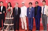 胡軍亮相上海電影節紅毯