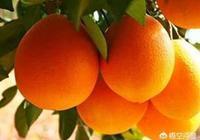 我是四川農村的想做電商賣水果,之前是做市場,我家旁都是水果,量也特別大,難做嗎?