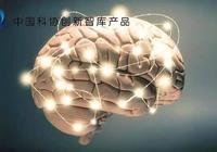 我國神經科學領域研究現狀:重點佈局,比肩國際