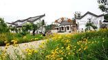 老外也在這村的農家院裡喝茶,這小山村真是太美了