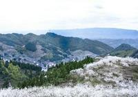 重慶渝北印盒村萬畝李花開,不知花勝雪,還是雪飛花?