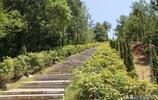 實拍:陳賡大將墓地,佔地15畝,由陵寢、墓碑、紀念碑組成