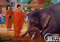 提婆達多的悲哀 提婆達多憑什麼得佛授記成佛