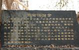 吐魯番葡萄溝