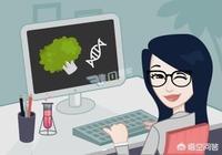 職場中,有哪些好習慣可以讓你受益匪淺?