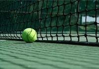 網球小說:網球怪手林阿大——看網球廢柴怎麼進步