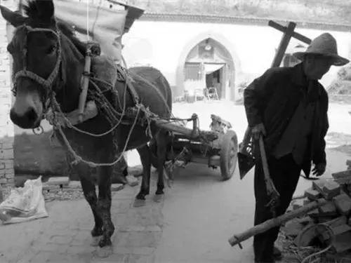 一個農村女人筆下的農村事兒