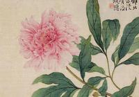 中國畫分享——歷代大家牡丹畫,風格迥異,每一幅都有不同的美