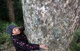 75歲老太獨居深山,守著200歲寶貝過苦日子,你怎麼看?