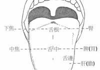 醫生說沒事多看看孩子舌頭,你會有驚人的發現!寶寶健康早知道