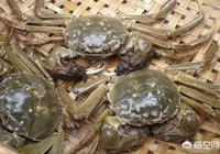 螃蟹怎麼做好吃?