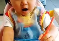 福原愛江宏傑帶愛拉醬和小動物玩,小小杰呢