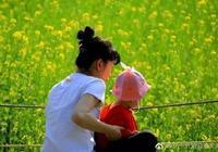 瀋陽北陵公園還有油菜花海 免費開放成為休閒度假好去處