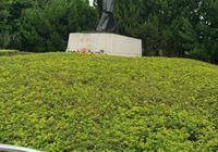 題蓮花山鄧小平銅像