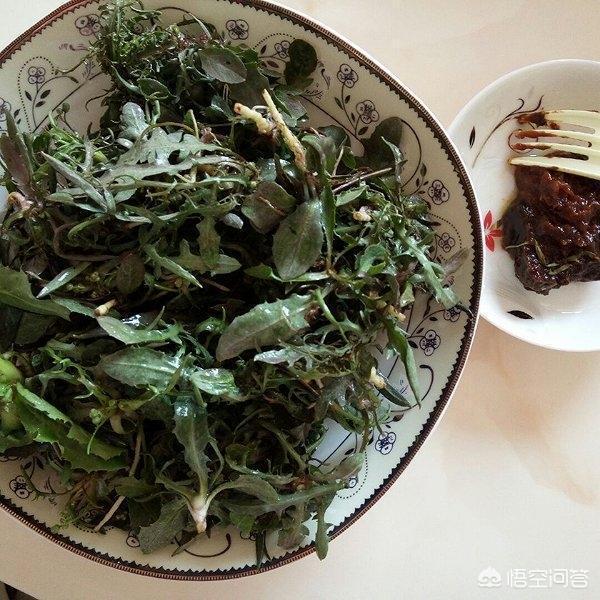 你吃過農村裡的,哪些讓你難以忘記的野菜?
