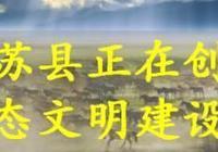 藍天白雲看賽馬 草原廣袤景色美