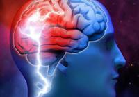 這本書告訴你:為什麼書讀得越多,你的大腦也會變得越聰明?