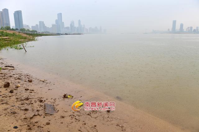 江西進入汛期 贛江水位持續上漲