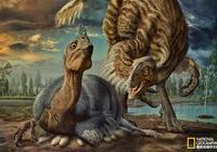 """巨型恐龍蛋裡的真相:""""中華貝貝龍"""""""