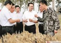 在麥收現場、在糧食倉儲中心,張國華這樣說夏收夏種!