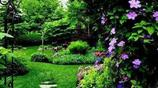每個少女心中都有一塊屬於自己的小花園