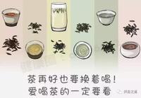 綠茶降火,紅茶暖胃,黑茶降脂!茶再好也要換著喝否則越喝越傷身