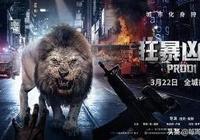 雖然只有4500萬票房,卻創造了荷蘭電影在中國大陸公映的最高紀錄