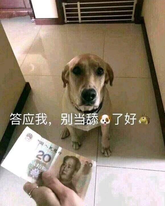舔狗是個什麼狗