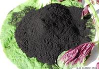 腐植酸肥、魚蛋白肥、氨基酸肥、海藻肥,哪個最好?