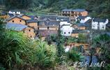 婺源山裡那僅有九戶人家的小村子,村裡除了老人就只有一個小學生