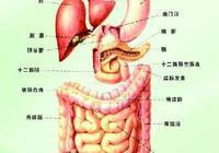 胃腸神經官能症,究竟是種什麼病?