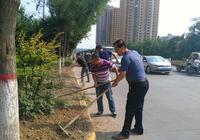 興平市城管局啟動城區綠化帶修剪工作