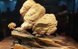 太原石展精品奇石展精彩圖集(二)以及以81萬元成交的奇石