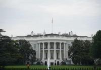 """英國《衛報》:美國政府打擊華為""""另有隱情"""""""