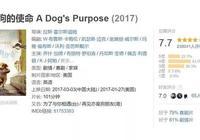 《一條狗的使命2》:也許,我們也在向狗學習如何去愛
