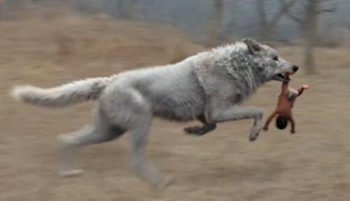 白鹿原白靈是誰扮演的