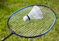 專業比賽用的羽毛球和幾塊錢一隻的羽毛球有什麼區別?