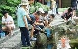 這所學校舉行釣小龍蝦比賽,看到最後我只問一句:還招老師嗎?