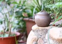 茶文化:半壁房簷待月明,一盞香茗酬知音
